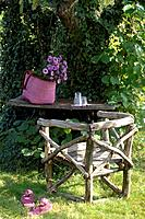 Garden table and garden chair