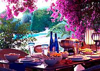 Summery table setting beneath bougainvillea
