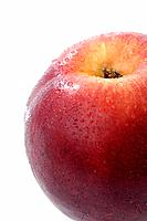 Nectarine (thumbnail)