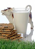 Glass of milk with crisp bread