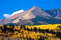 Alberta Rocky Mountains in autumn _ Canada