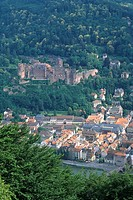 High angle view of cityscape, Neckar River, Heidelberg, Baden_Wurttemberg, Germany