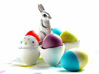 Dyed eggs and Easter bunny
