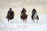 Cowboys out for a winter ride in Shell, Wyoming, Usa
