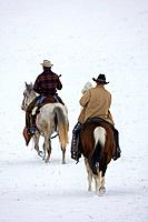 Cowboys riding away through the snow, Shell, Wyoming. Usa