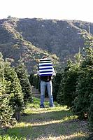 Young man holding gift boxes in field of Christmas trees