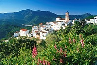 Spain, Andalucia, Algatocin village