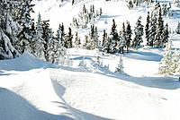 Canada, BC, Sun Peaks Resort  Early winter snow at ski resort in BC´s southern interior