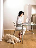Woman at her desk, dog sleeping