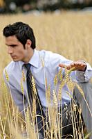 Business man in wheat field