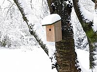 Nest box under snow
