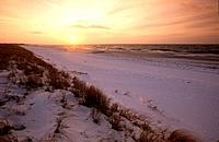 Snow covered beach, Darss, Germany