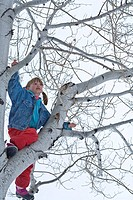 Young girl 8_9 climbing birch tree