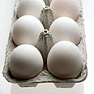 White eggs in carton, close_up