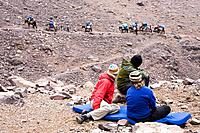 A trekking group and their mules, Morocco, Atlas Mountains, Toubkal Region. North Africa