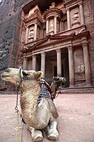Camels in front of The Treasury, Petra, UNESCO World Heritage Site, Jordan