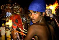 Boy on elephant, Kandy Perahera buddhist festival, Kandy, Sri Lanka, Asia