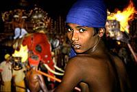 Boy on elephant, Kandy Perahera buddhist festival, Kandy, Sri Lanka, Asia