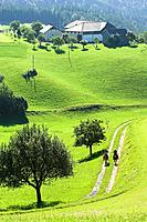 Two horseriders riding through a meadow, Muehlviertel, Upper Austria, Austria