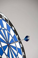 A dart on the bullseye