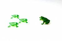 Plastic frog facing group of frog shaped game pieces