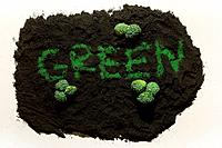 Broccoli on soil and the word 'GREEN' in the middle
