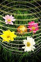 Globe and flowers surrounded by wire mesh on grass