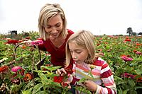 Mother and daughter in a field of organic flowers, Ladner, British Columbia, Canada