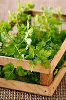 Small box of parsley