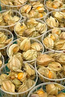 Stall of punnets of physalis