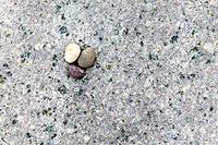 Small stones on a big one