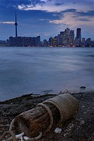 Beached flotsam on the Toronto Island with dusk cityscape