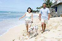 View of a couple walking with dog at beach