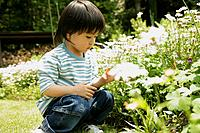 A young boy looks over the flowers in garden