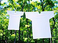 Two White T_Shirts that are Hung Outside in Nature, High Angle View, Differential Focus