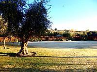 natural empty ground fields