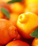 Several mandarin oranges with leaves full_frame