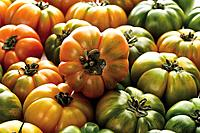 Oxheart Tomatoes, close_up, full frame