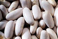 white beans grains food meal natural seeds