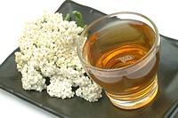 Yarrowtea, yarrow_tea, infuso di millefolgio, Yarrow, Achillea millefolium, Millefoglio,