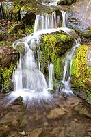 Crystal Springs waterfall, Oregon, USA