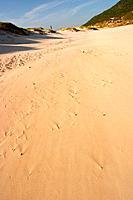 Dune, Beach Costão do Santinho, Florianópolis, Santa Catarina, Brazil
