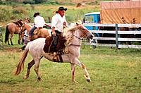 Horse, Cowboy, Caxias do Sul, Rio Grande do Sul, Brazil