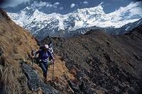 Trekking in the Himalaya Langtang Valley, Nepal