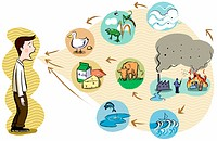 How pollution affects the food chain