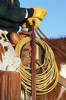 Close up of a cowboy holding the reins of his horse, Shell, Wyoming