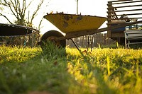 Wheelbarrow in lawn