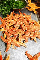 Starfish in a tray, Qingdao, Shandong Province, China
