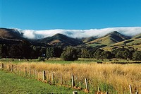 New Zealand _ South Island _ Canterbury _ Banks Peninsula