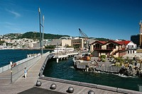 New Zealand _ North Island _ Wellington _ Jervois Quay _ Te Papa _ Mt Victoria